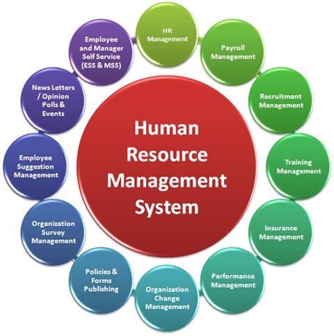 what are the main factors/hrm procedures that have contributed to the success of google? essay Free essays database find thousand essay topics and what is the main conflict in the find free essays on different topics in english at studymoosecom.