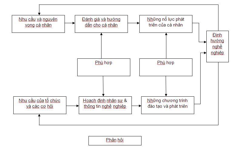 mô hình định hướng nghề nghiệp