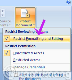 Word-restrict-formatting-editing